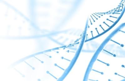 ما هو علم الوراثة ؟