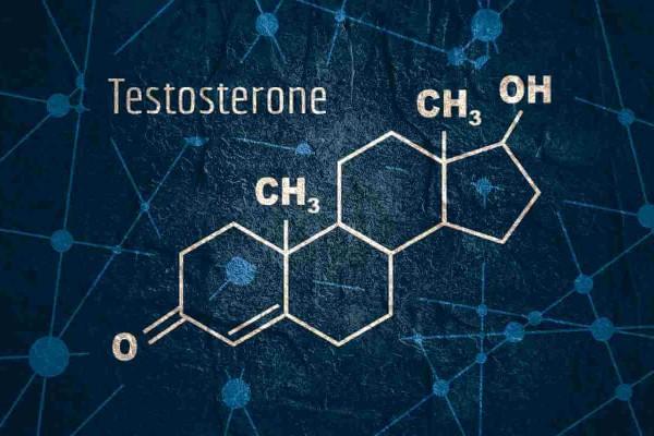 هرمون التستوستيرون والنسبة الطبيعية عند الرجل