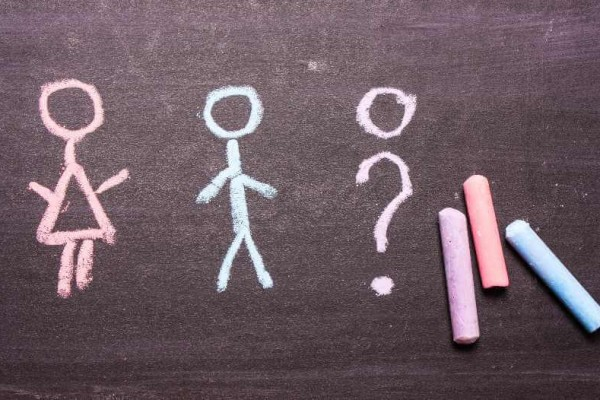 Gender selection steps and success rates in Egypt